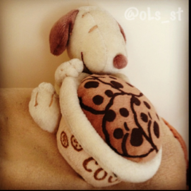 Can I have some of your cookies #snoopy
