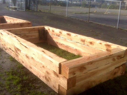 Build Raised Beds With Juniper For The Garden Building