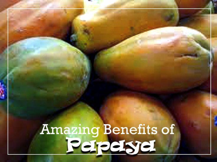 Amazing Benefits of Papaya About Papaya The papaya is a large, tree-like plant, see more...http://naturebring.com/blog/amazing-benefits-papaya/