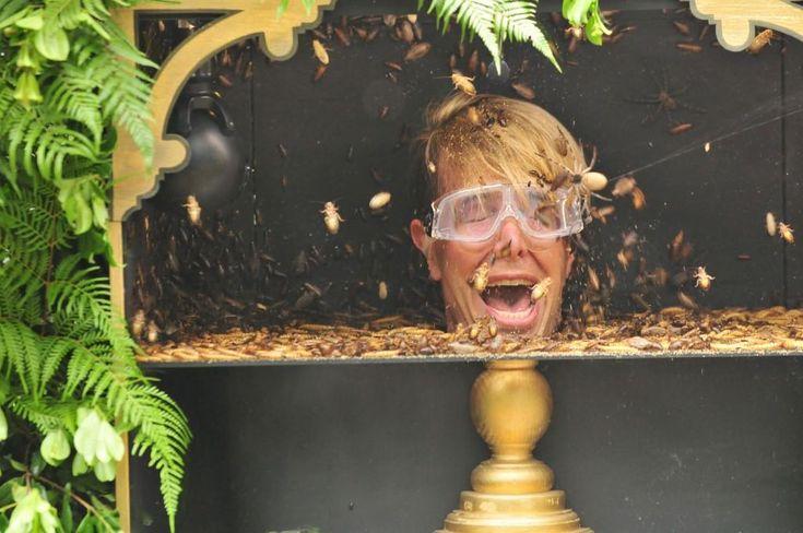 Tag 13 im Dschungelcamp: Alle Promis müssen in die Dschungelprüfung – Jens Büchner wurde… #Dschungelcamp_2017 #Entertainment #Abstimmung
