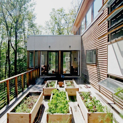 Modern Home Vegetable Garden Beds Design Ideas Pictures Remodel