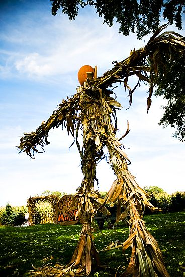 With some creative thinking corn stalks are good for more than just decorating your light post or for getting lost inu2026 & 21 best Scarecrows images on Pinterest | Scarecrows Scarecrow ideas ...