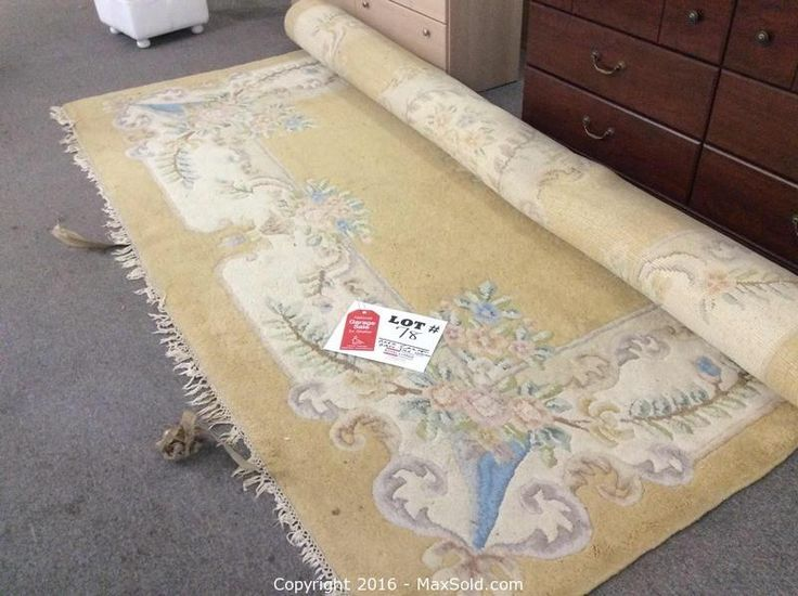 Large Area Rug still sitting at under $5.00!! WOW! Auction closes in a couple of hours!