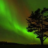 The definitive guide to Northern Lights spotting  Alberta Sky Aurora Tours
