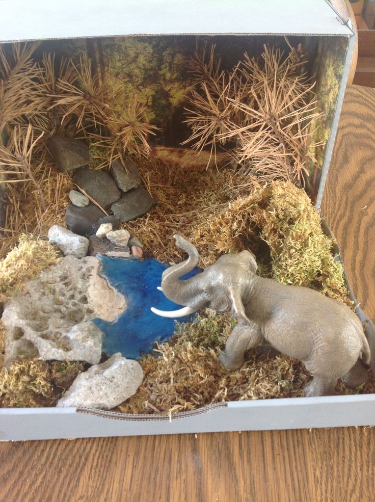 Save the Asian elephant this is a Diorama of a Asian elephant habitat I made