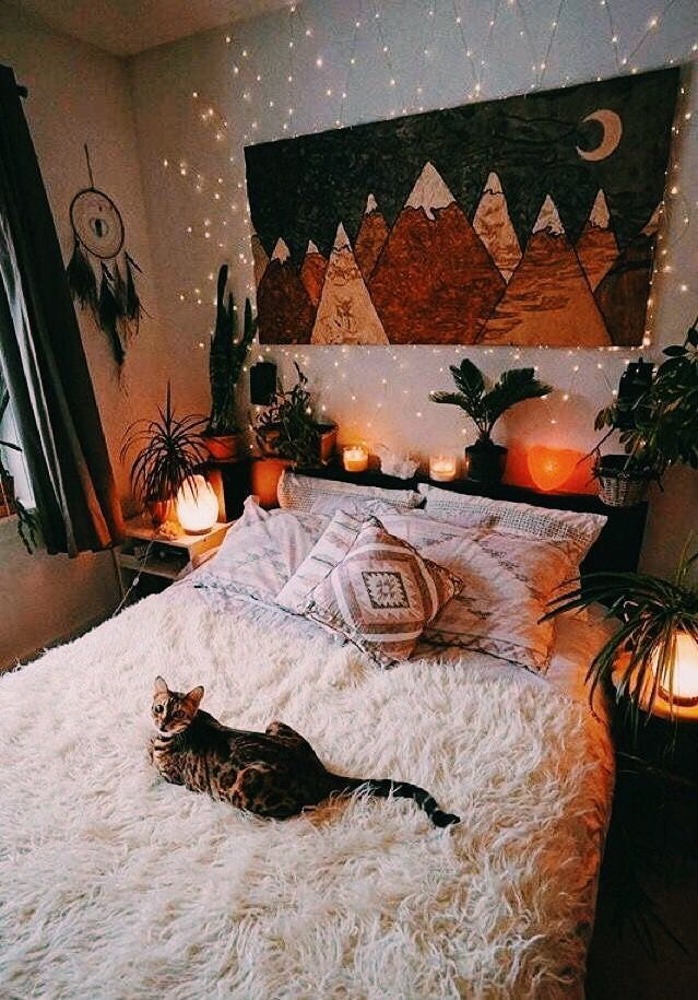 A Sozy Cat Place Cute Cats Home Decor Room House Rooms