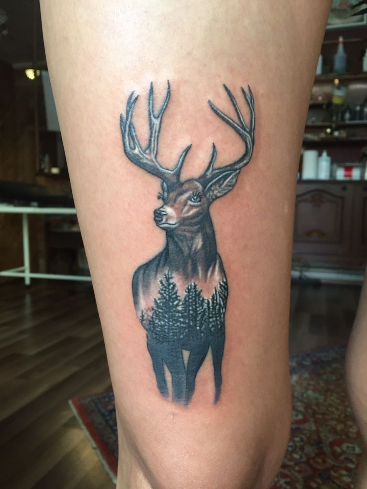 deer and pine forest tattoo