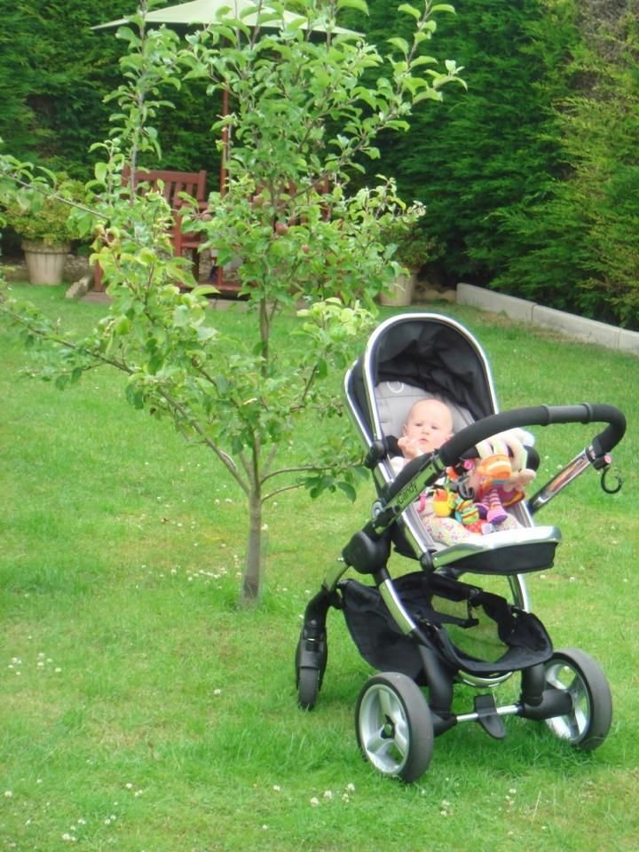 Thanks so much to Nikki Beswick for sharing this lovely photo of little Roma Beswick relaxing by the apple tree at Nana and Grandads!