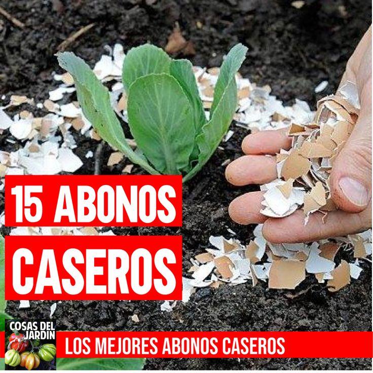 Home Vegetable Garden, Compost, Flora, Exterior, Nature, Gardening, Gardens, Home, Growing Plants