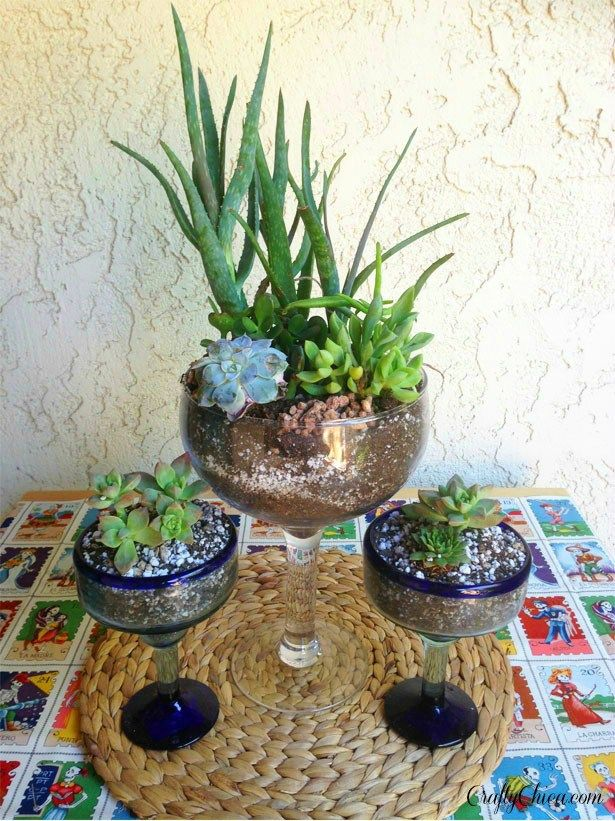 I thought it would be a great time to try out this idea I've  had for a while - Margarita Glass Cactus Gardens! I used mostly succulents which hardly require any water at all, and you need a shallow planter - these glasses work perfectly. These would make great wedding favors or wedding centerpieces for a southwestern theme, or even a regular party. Your guests can take them home and replant them, and then use the Margarita glass for----Margaritas! They'll think of you every time...