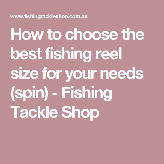 How to choose the best fishing reel size for your needs (spin) - Fishing Tackle Shop