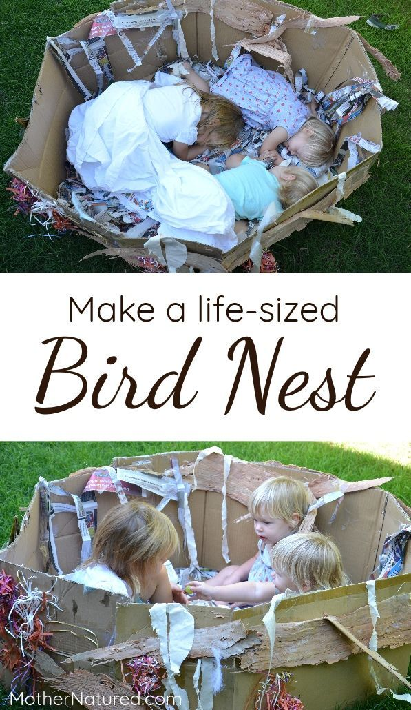 Gorgeous life-size bird nest made from recycled materials. Try it!