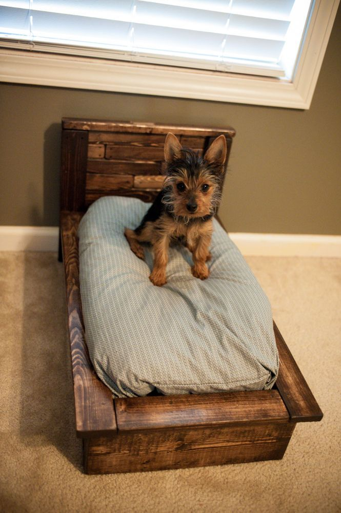 "I was building a Queen sized bed and headboard from the following tutorial.When I looked down and noticed that I had plenty of scraps left over to make my new puppy (Packets) a miniature version of my bed. I didn't have all the tools to properly plane pallet wood, so I opted to buy pine from Lowe's for my build and roughed it up to look like pallets. At the time I didn't know to look for ""HT"" for safe pallets and I needed a bed."