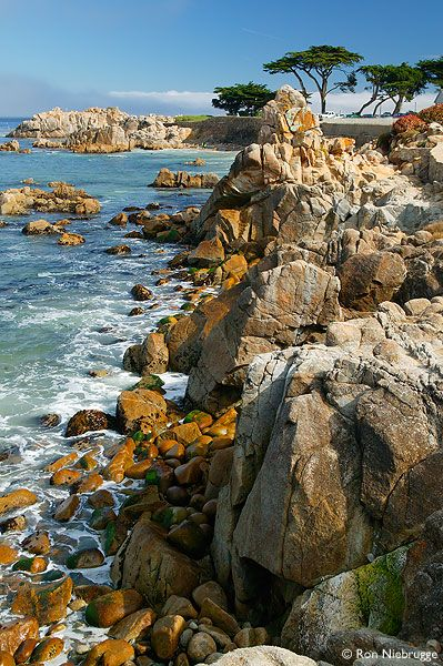 The Monterey Peninsula, Pacific Grove, California