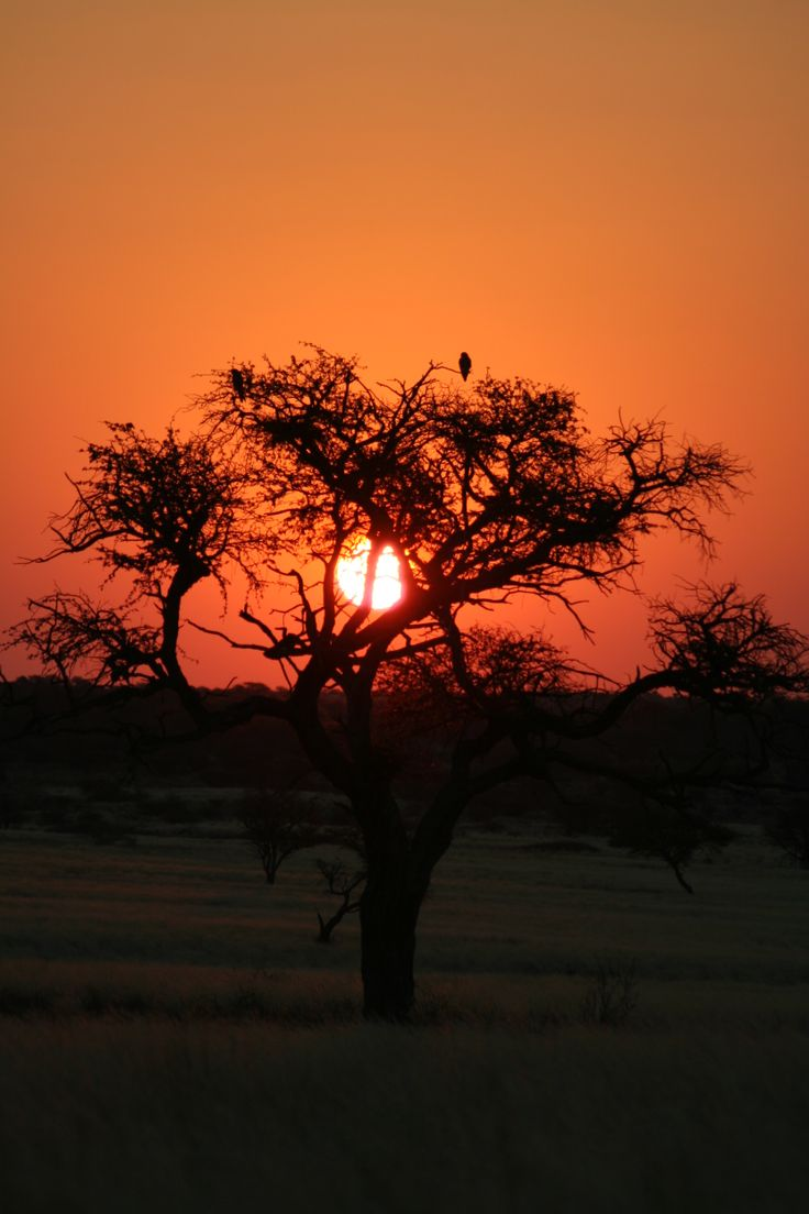 Sunset over Central Kalahari Botswana
