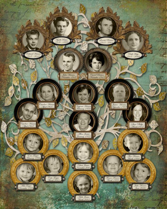 67 Best Alberi Genealogici Images On Pinterest Family Trees