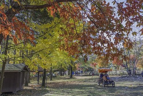 Namipungwon Garden