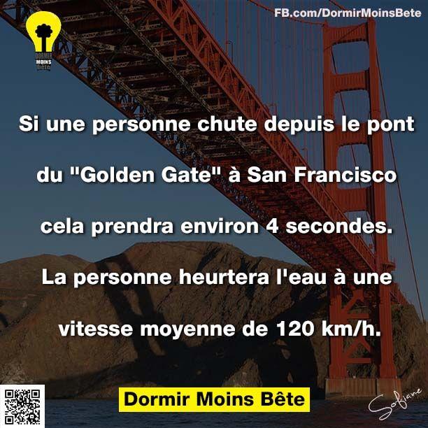 """Si une personne chute depuis le pont du """" Golden Gate"""" à San Francisco, cela prendra environ 4 secondes. La personne heurtera l'eau à une vitesse moyenne de 120 km/h"""