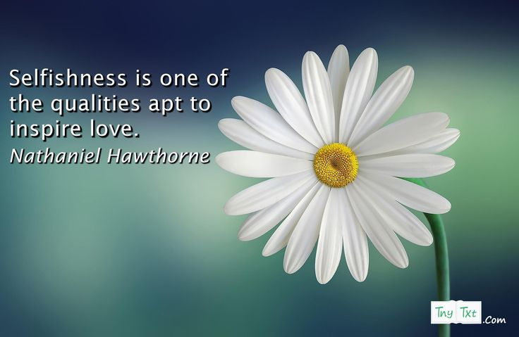 Selfishness is one of the qualities apt to inspire love. - Nathaniel Hawthorne