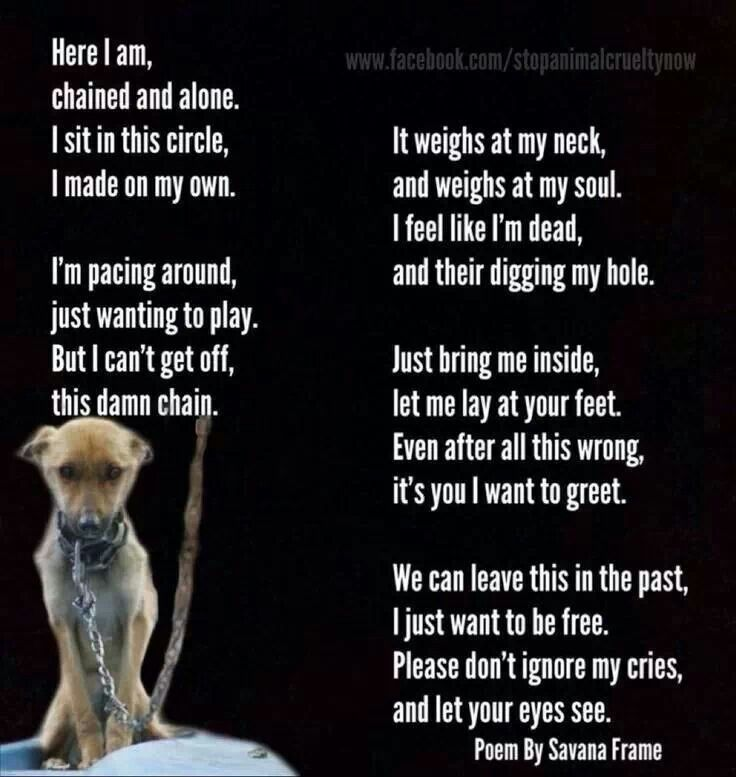 A chained dog's poem such a said poem but so true... Art