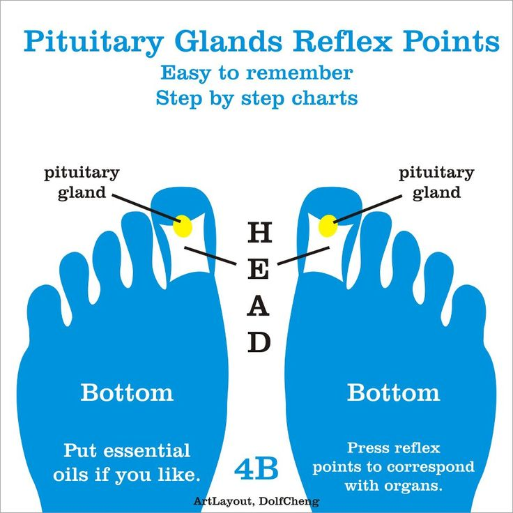pituitary gland reflex points #pituitary