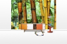 Bamboo Trees - Fototapeter - Photowall