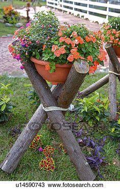 Blumen eingemachtes Legen auf hölzernes Regal in Garten Stockfotografie – Dingus Mcklingus