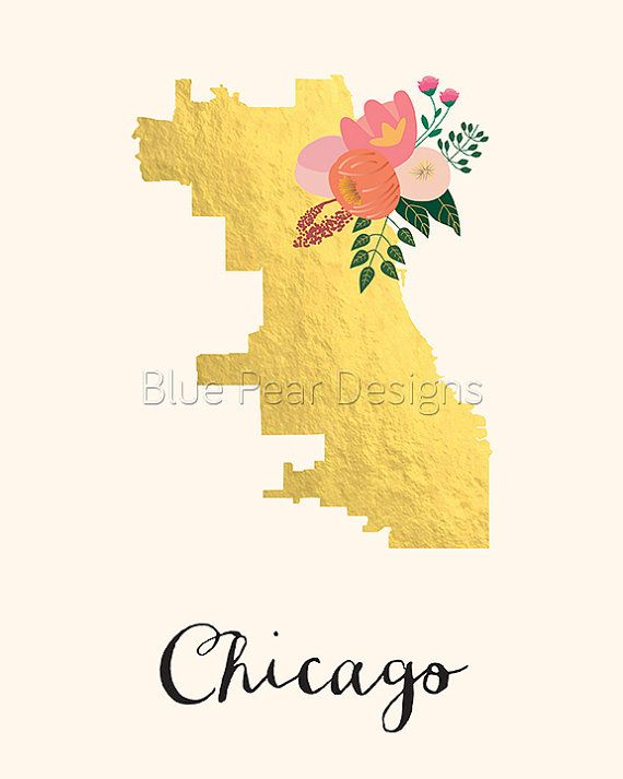 The 25 best Chicago map ideas on Pinterest