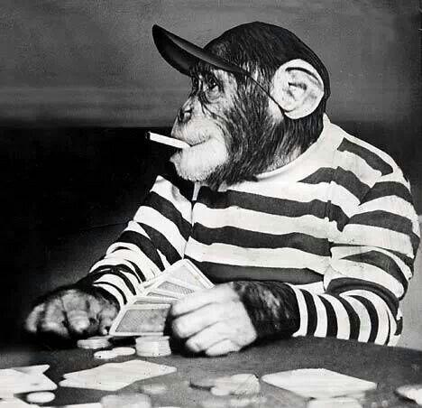 Poker Lustig