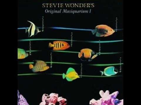 """Stevie Wonder """"Higher Ground"""""""