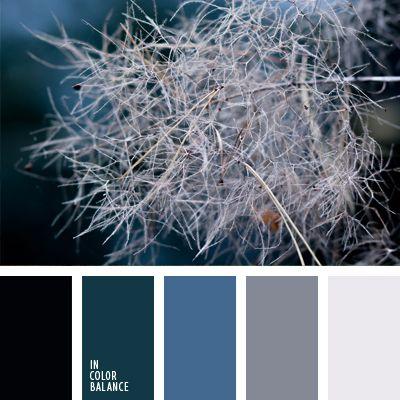 Alex Romanuke, azul claro, azul oscuro, blanco y azul oscuro, color casi negro, color cerceta, color pino canadiense, color verde azulado, elección de colores, elección del color, esmeralda, esmeralda oscuro, gris, gris y azul oscuro, paletas para un diseñador.