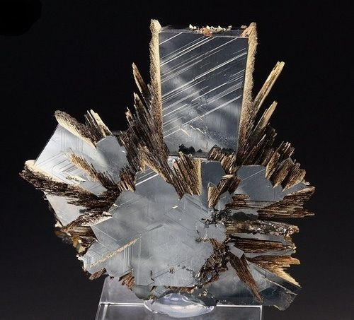 Rutile crystal sprays on lustrous Hematite. Origin: Novo Horizonte, Bahia, Brazil