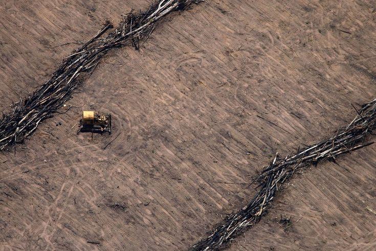 Soil is prepared for soybean farming within the 'Legal Amazon' in Mato Grosso, Brazil. December 2008. Rodrigo Baleia
