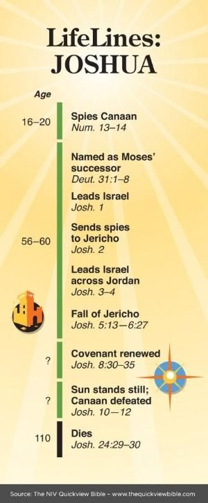 thequickviewbible.com : Life of Joshua by Hasenfeffer