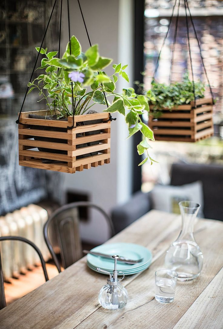 hanging plants above the dining table #decor #greeninside