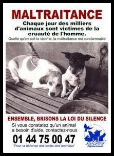 Il faut aider les animaux