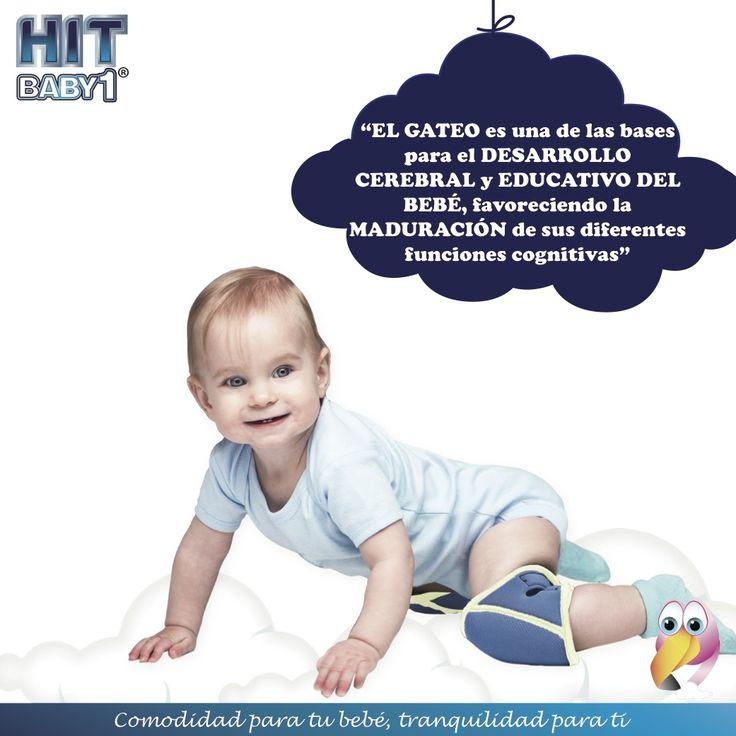 """""""El gateo es una de las bases fundamentales en el desarrollo cerebral y educativo del bebé, favoreciendo la maduración de sus diferentes funciones cognitivas"""" #gateo #bebé #desarrollo #gatear #salud"""