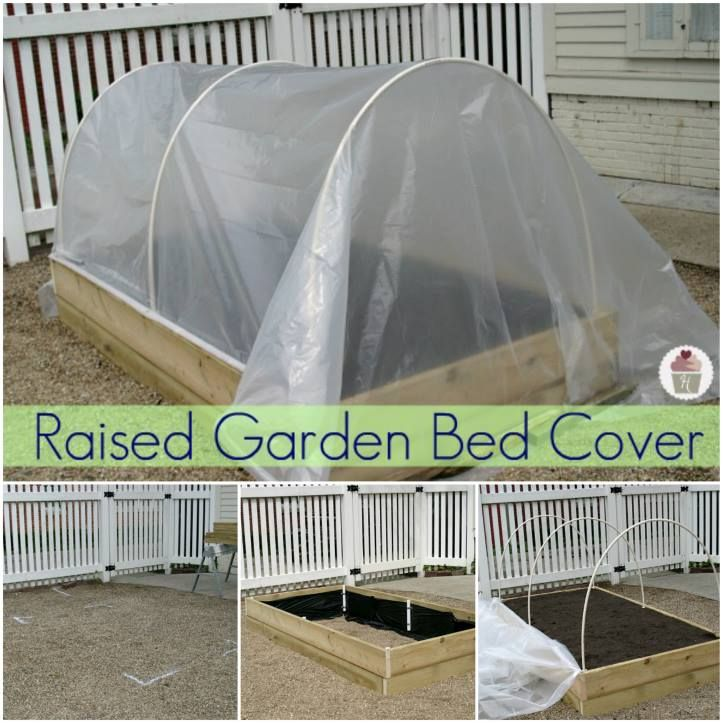 34 Best Images About Raised Bed Garden On Pinterest