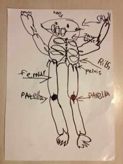 Room 6's Blog: Flo draws a skeleton