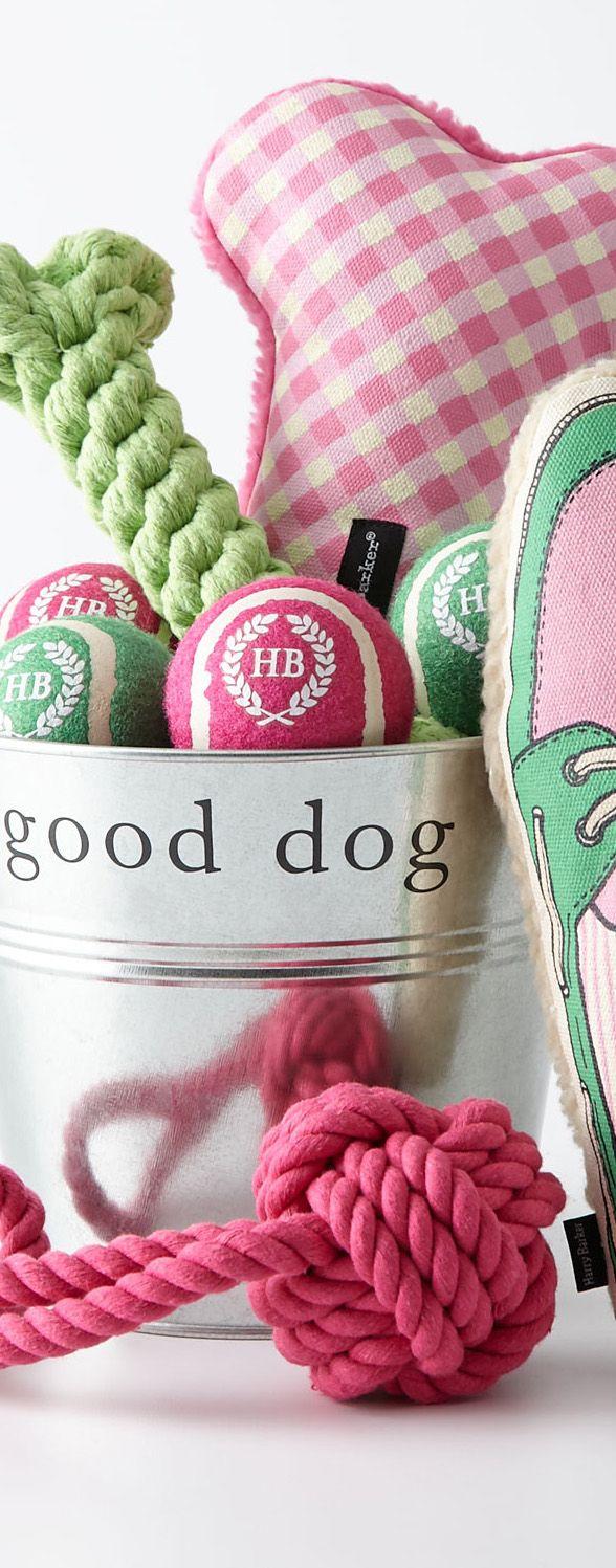 Harry Barker Preppy Dog Gift Basket