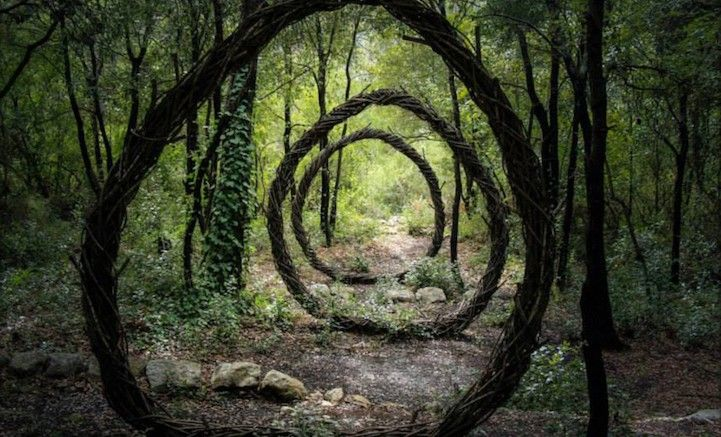 Spencer Byles_Sculptures_Forest