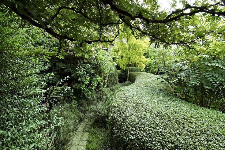 Gunnar Martinssons trädgård på Ven. Klippt liguster och skirt bladverk från korstörne. http://rosenholm.se/wp-content/uploads/2014/02/DSC_4524.jpg