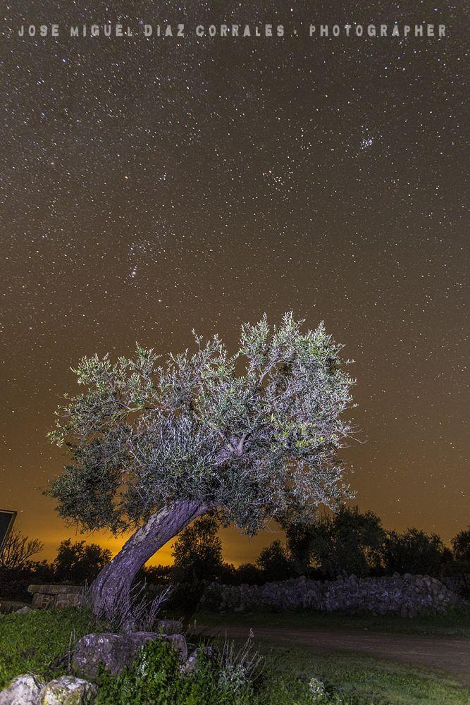 Noche by Josemigueldiazcorrales