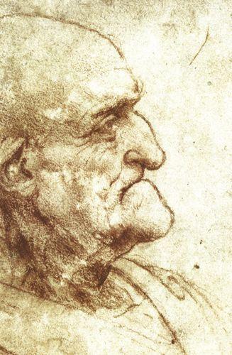 Studio profilo di un vecchio - Leonardo - Opere d'Arte su Tela - Listino prodotti - Digitalpix - Canvas - Art - Artist - Painting