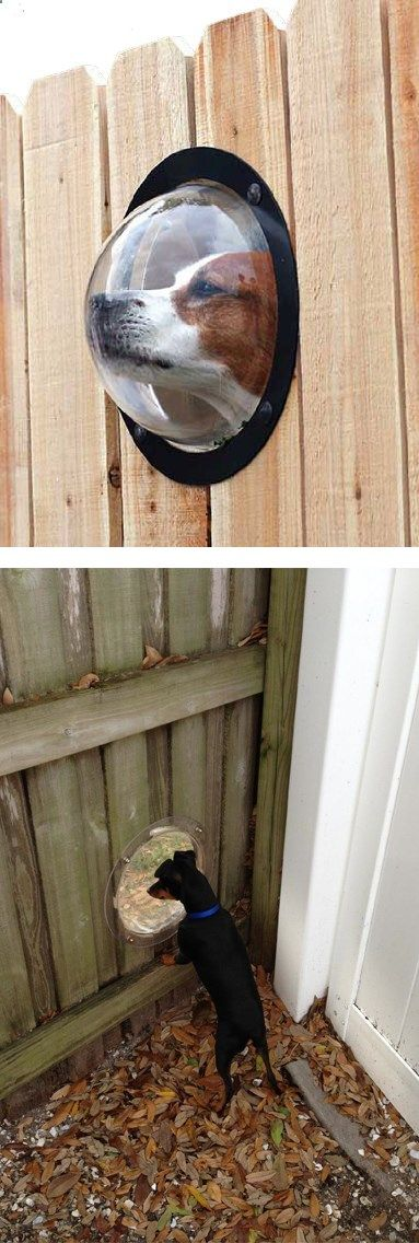 Dog Fence - A good vision is what they need and you don't have to sacrifice another fence for that so give your dogs that kind of satisfaction. Check it out==> gwyl.io/...