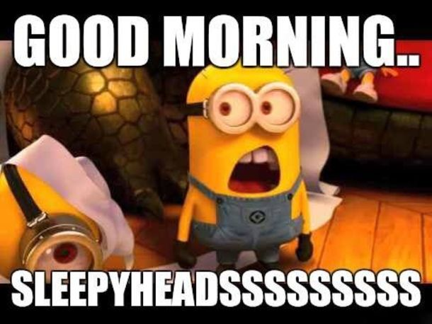 20 Awesome Good Morning Minion Quotes That You Will Love Minions Funny Minions Happy Minions