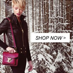 New Small Saddle Prince | Women's Leather Shoulder Bags | Roots