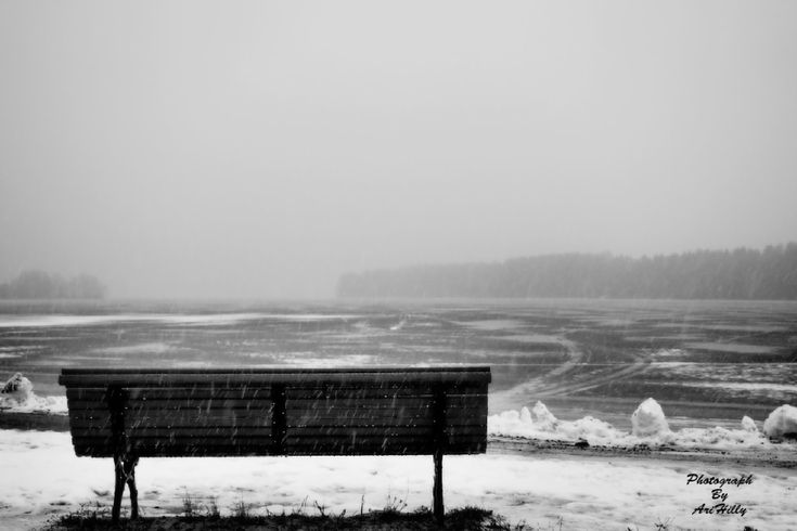 (2) Photo taken with E-M5MarkII Canon EF 28-200mm f/3.5-5.6 or Tamron Lens - Random - YouPic
