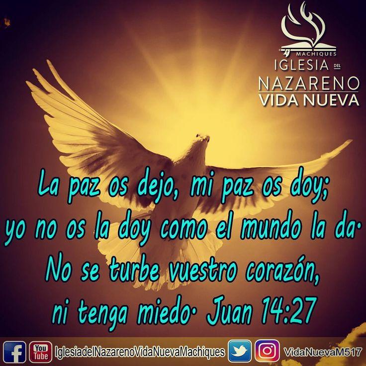 La paz os dejo, mi #paz os doy; yo no os la doy como el mundo la da. No se turbe vuestro #corazón , ni tenga miedo. Juan 14:27
