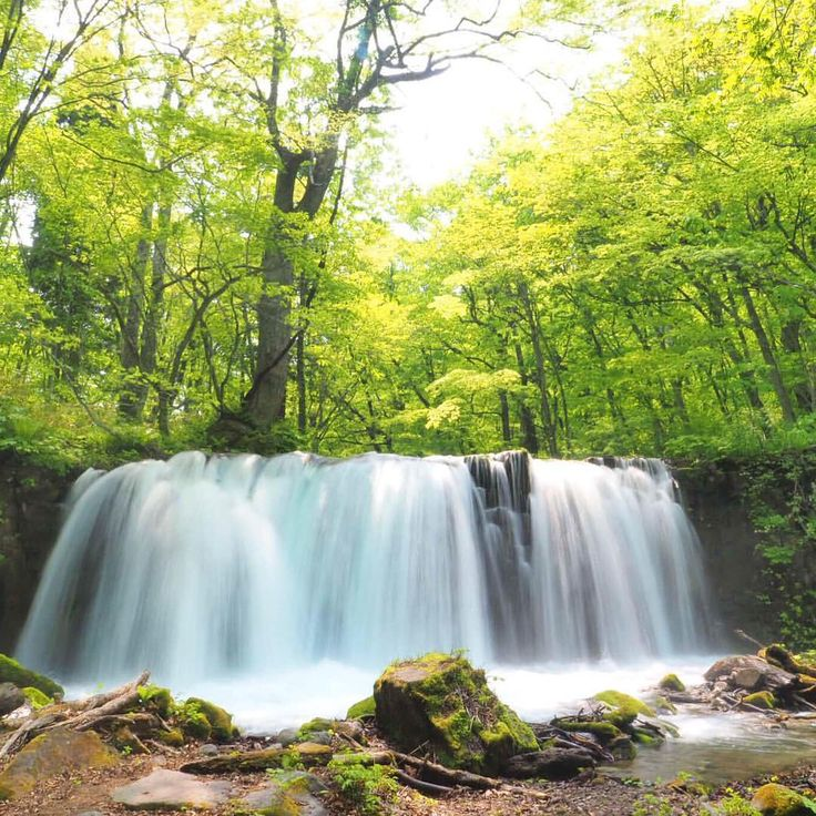 Pretty waterfall  #銚子大滝 #奧入瀨渓流 #Japan #Towada See this Instagram photo by @mina_journey